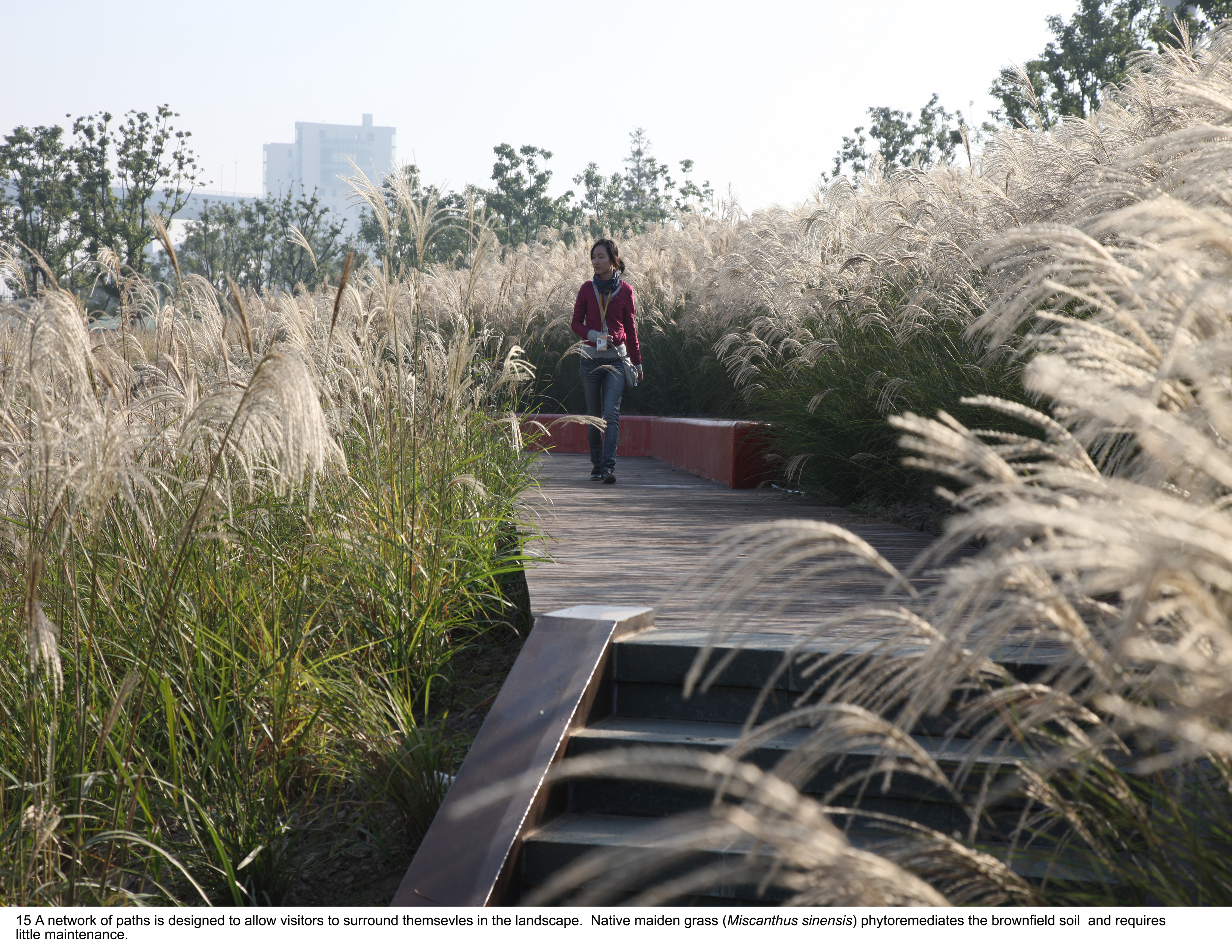 ASLA 2010 Professional Awards | Shanghai Houtan Park: Landscape as ...