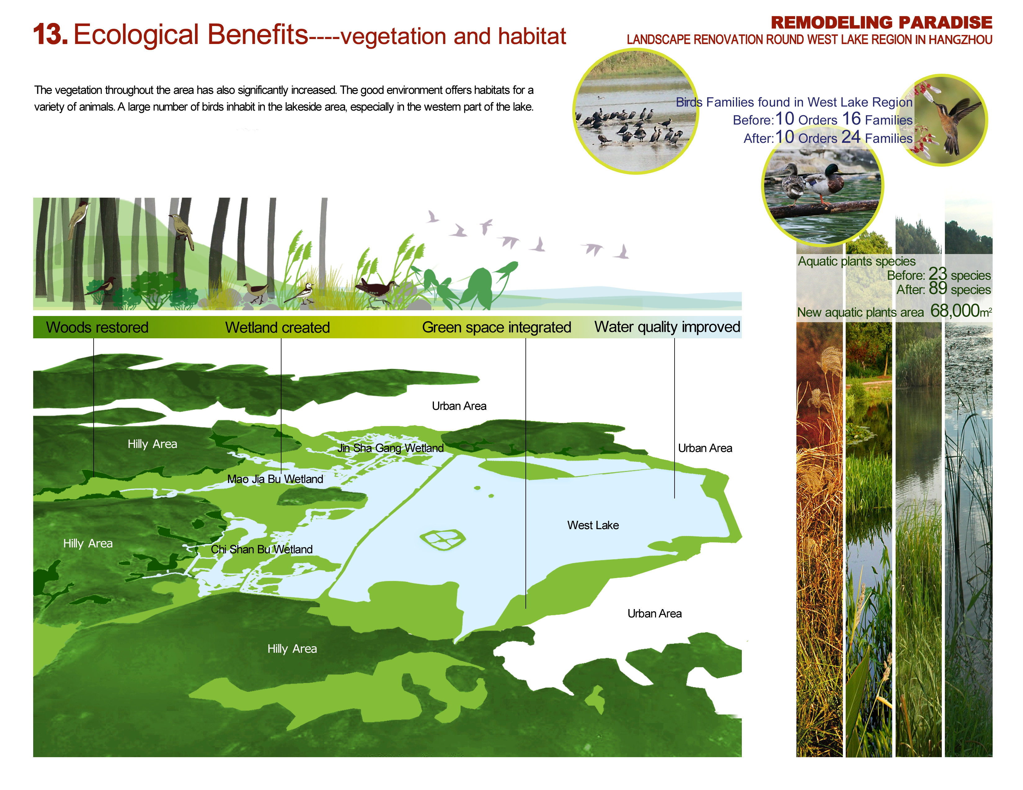 an analysis of the regions of vegetation Wadi arar in the northern border region of saudi arabia is one of the most important wadis of the kingdom the present study provides an analysis of vegetation types, life forms, as well as floristic categories and species distribution.