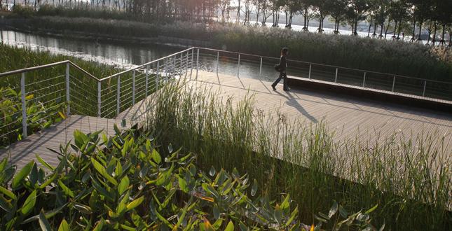 Shanghai Houtan Park