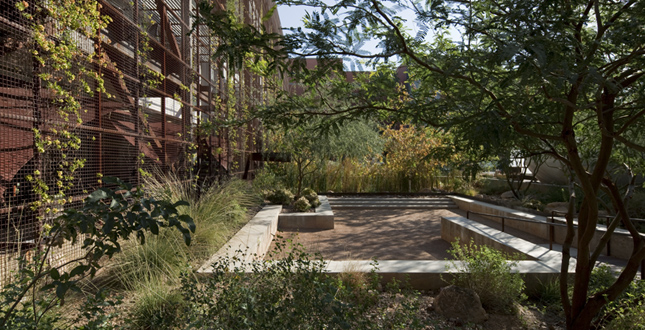 Superb Sonoran Landscape Laboratory