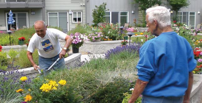 ASLA 2010 Professional Awards | Access To Nature For Older Adults Promoting Health Through ...