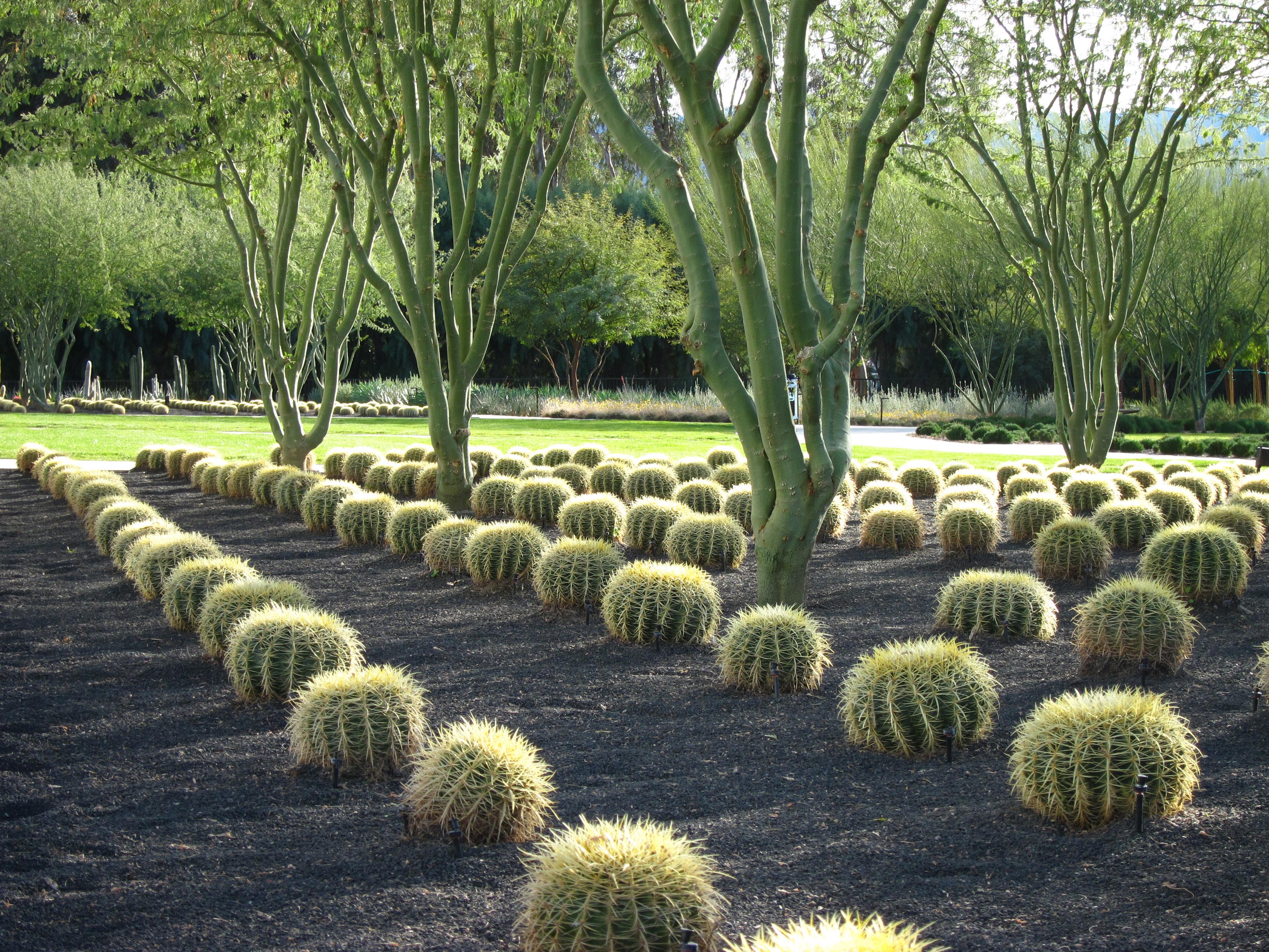 Asla 2012 professional awards sunnylands center gardens for Gardening and landscaping