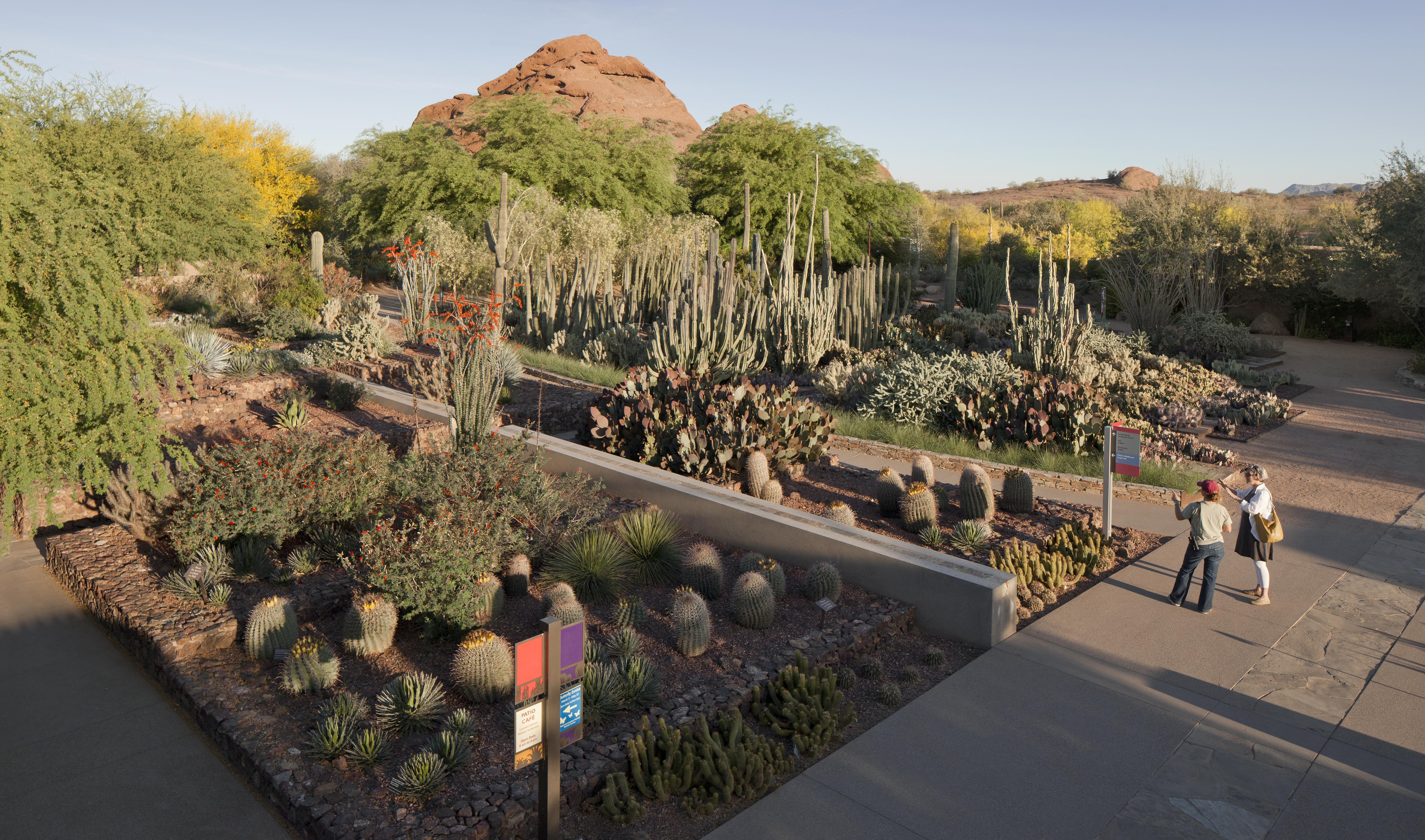 High Desert Garden Ideas Photograph Displaying 7 Images F