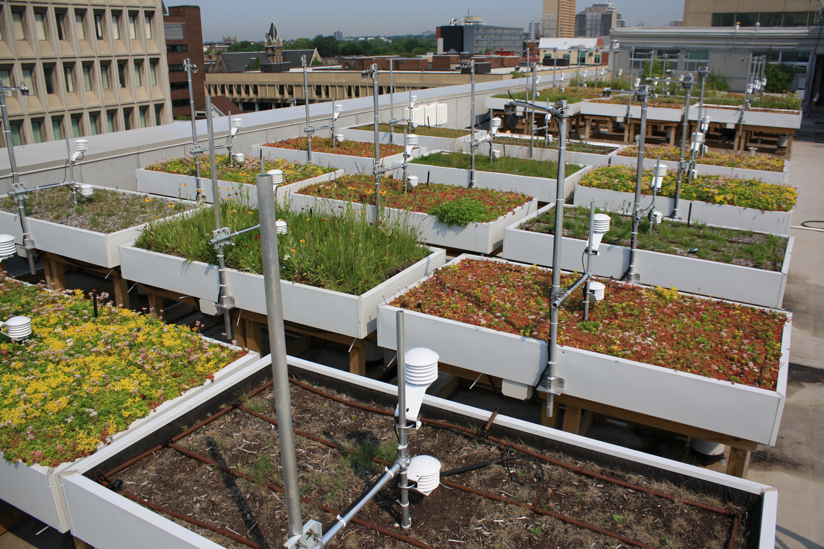 Asla 2013 Professional Awards Green Roof Innovation Testing Grit Laboratory