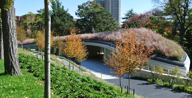 Brooklyn Botanic Garden Visitors Center Landscape