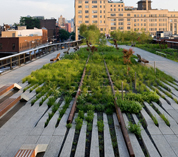Landscape Architecture Collaboration