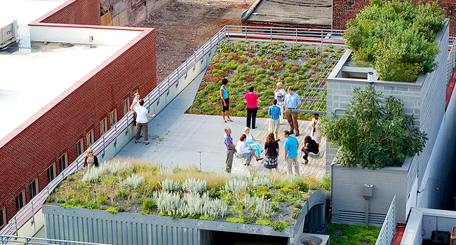 Visit the asla green roof gallery on flickr