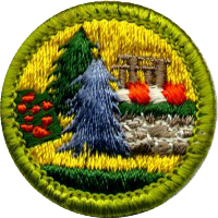 merit badge badges boy scouts landscape architecture scout discovery career insect study eagle mom scouter source roof elective asla