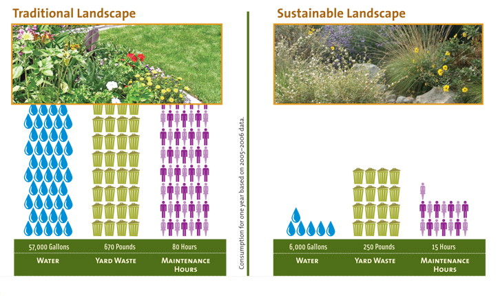 Sustainable Garden Ideas Designing our future sustainable landscapes gardengarden a comparison in santa monica sisterspd
