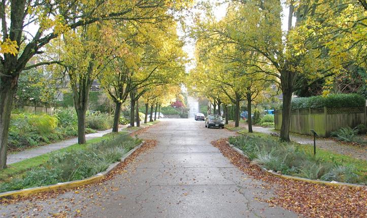 NE Siskiyou Green Street Street