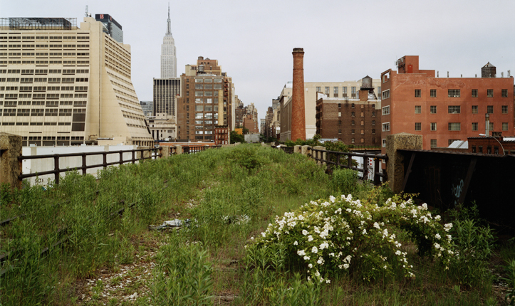 Designing Our Future: Sustainable Landscapes