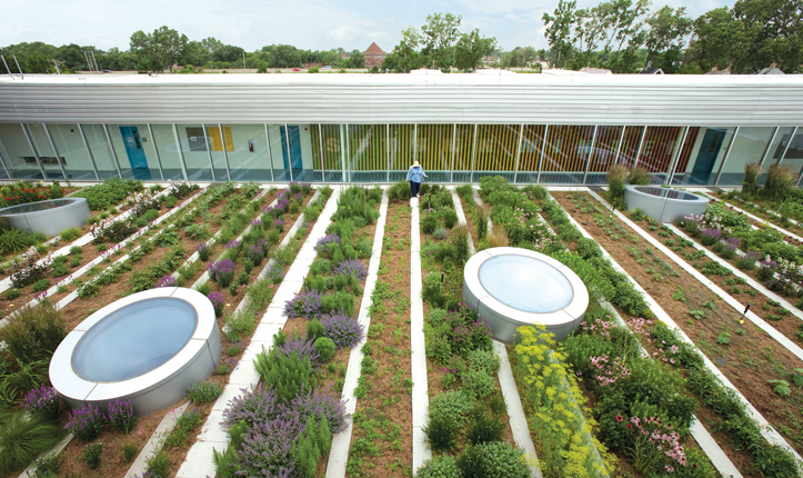 Designing Our Future: Sustainable Landscapes on