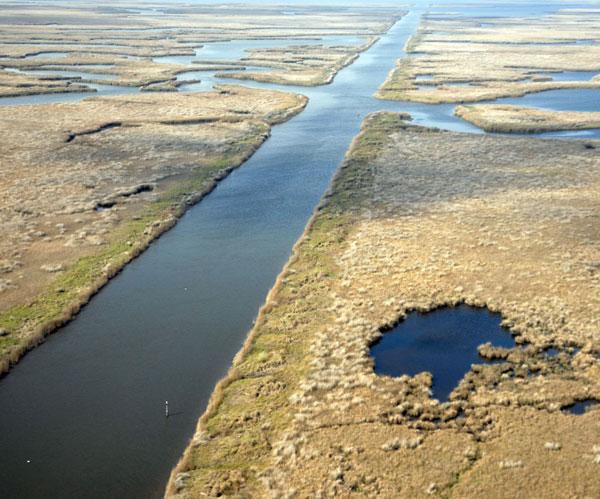 mossop_coastalwetland