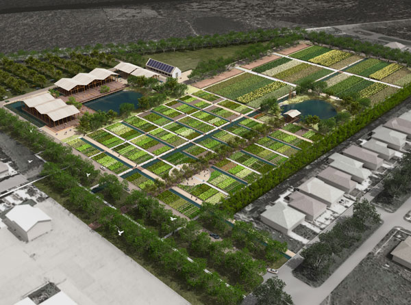 How Landscape Design Can Protect New Orleans