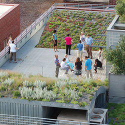 Green Roof - ASLA Aerial