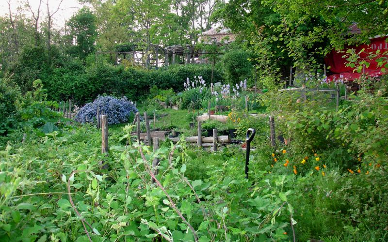 Applying Ecological Design Gardens And Permaculture