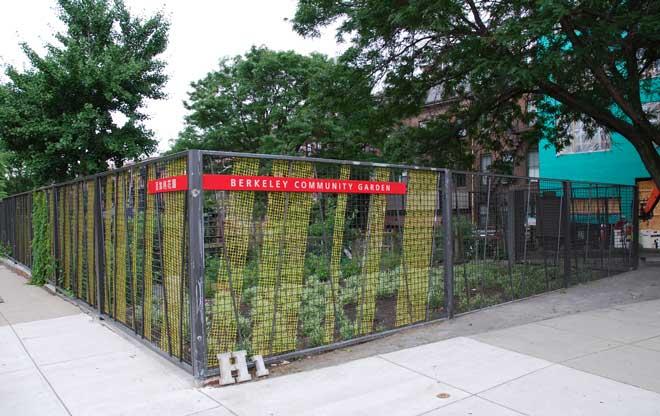 Ground Wire Color >> Berkeley Community Garden | The Landscape Architect's Guide to Boston