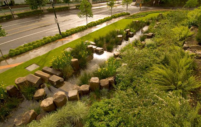 Rain Garden At The Oregon Convention Center | The Landscape Architectu2019s Guide To Portland