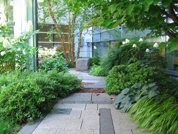 Therapeutic Landscapes - Garden