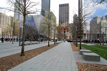 Bartlett - Trees at 911 Memorial